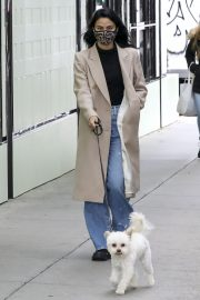 Out with Her Dog in Vancouver 2020/10/27 3