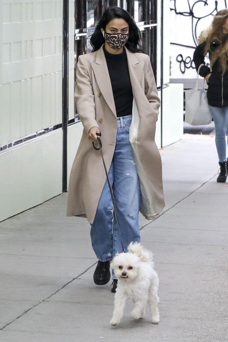 Out with Her Dog in Vancouver 2020/10/27 10