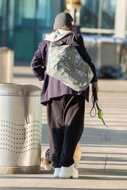 Vanessa Hudgens with Her Dog at JFK Airport in New York 2020/11/16 2