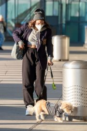 Vanessa Hudgens with Her Dog at JFK Airport in New York 2020/11/16 3