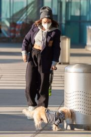 Vanessa Hudgens with Her Dog at JFK Airport in New York 2020/11/16 7