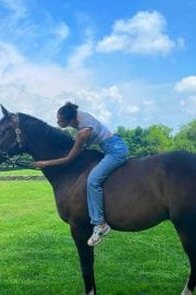 Bella Hadid Riding a Horse – Instagram Photos 12/01/2020 1