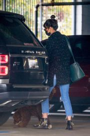 Jordana Brewster seen in Ripped Jeans Leaves a Vet Clinic in Westwood 11/25/2020 8