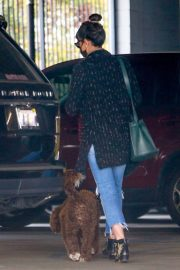 Jordana Brewster seen in Ripped Jeans Leaves a Vet Clinic in Westwood 11/25/2020 10
