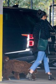 Jordana Brewster seen in Ripped Jeans Leaves a Vet Clinic in Westwood 11/25/2020 11