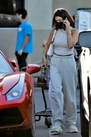 Vanessa Hudgens and GG Magree Out Shopping in Los Angeles 12/04/2020 1