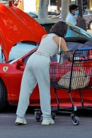 Vanessa Hudgens and GG Magree Out Shopping in Los Angeles 12/04/2020 2