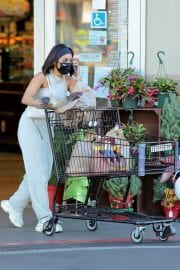 Vanessa Hudgens and GG Magree Out Shopping in Los Angeles 12/04/2020 6
