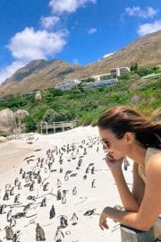 Victoria Justice Penguin Boulders Beach in South Africa 12/05/2020 2