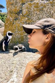 Victoria Justice Penguin Boulders Beach in South Africa 12/05/2020 4