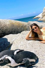 Victoria Justice Penguin Boulders Beach in South Africa 12/05/2020 6
