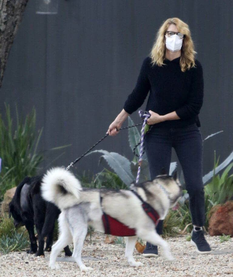 Laura Dern Out with Her Dogs on Her Birthday in Los Angeles 02/10/2021 3