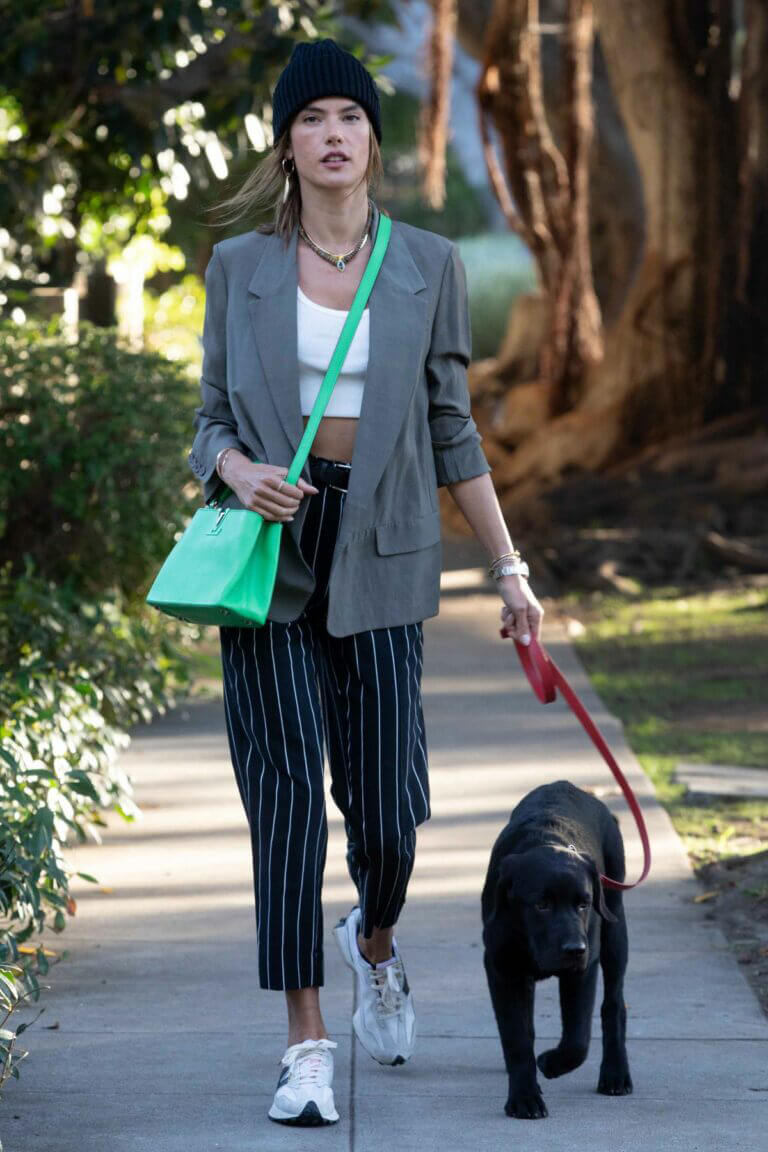 Alessandra Ambrosio Day Out with Her Dog in Santa Monica 03/24/2021 2
