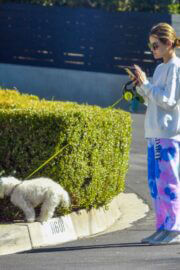 Lucy Hale in Comfy Outfit as She Out with Her Dog in Studio City 02/24/2021 6