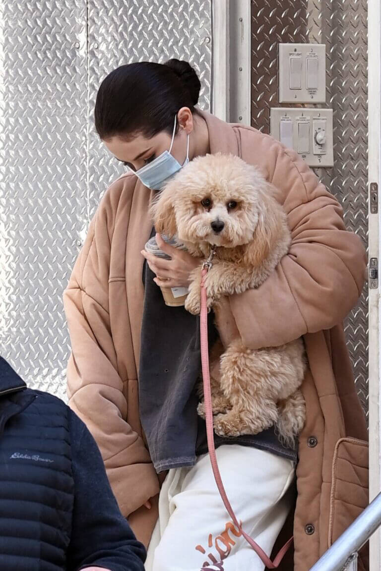 Selena Gomez with her Pet arrives on the Set of 'Only Murders in the Building' in New York 03/10/2021 7